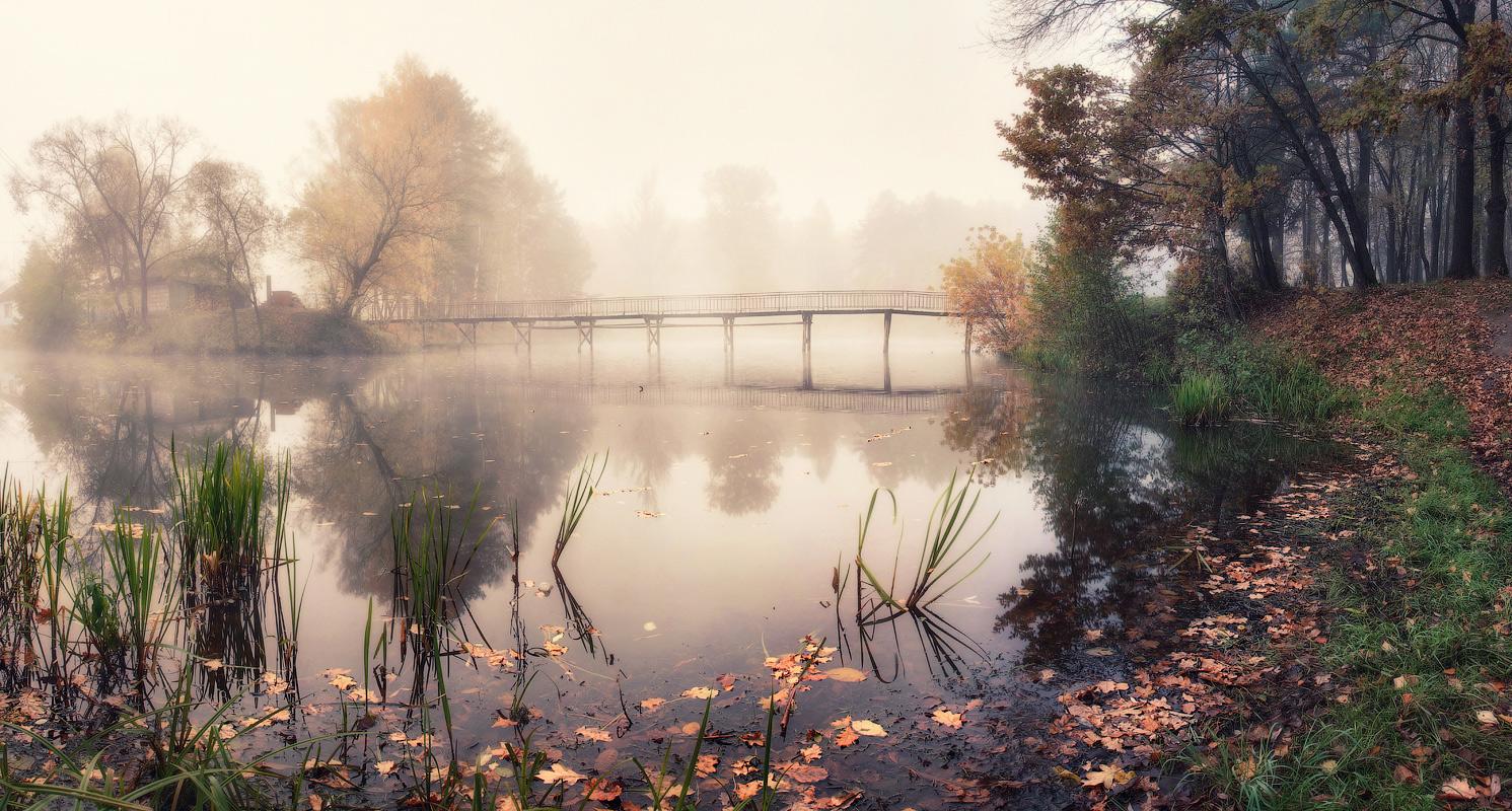 Photo du week #12 : My autumn
