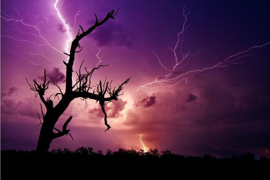 Photo du jour #65 : Electrifying