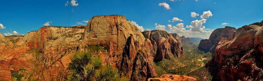 Photographie du jour #169 : Angel's Landing Panorama
