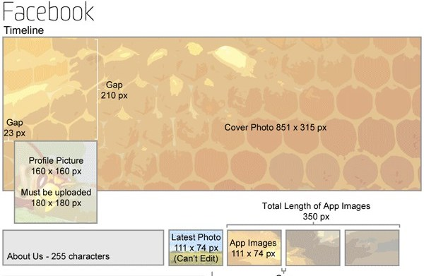 Infographie sur les formats utilisés sur les réseaux sociaux   Cheat Sheet