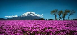 Photographie du jour #368 : Mont Fuji