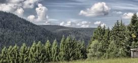 Time lapse du massif montagneux Forêt-Noire – Allemagne