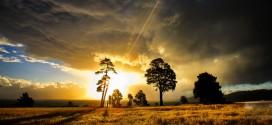 La beauté des paysages de la Nouvelle-Zélande en vidéo