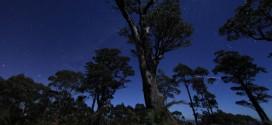 Beauté de la Victoria en time lapse – Australie