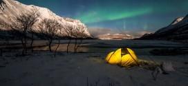 La beauté des Aurores Polaires de la Norvège et de l'Islande