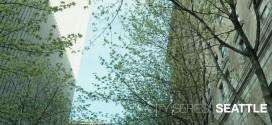 La superbe ville de Seattle en vidéo