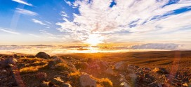 Nouvelle-Zélande –  Le pays du long nuage blanc
