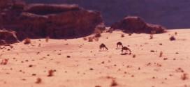 La Jordanie en time lapse miniature