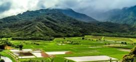 La beauté de l'île d'Kauai – Hawaï