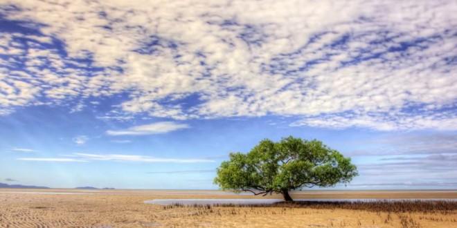 Decouverte Queensland