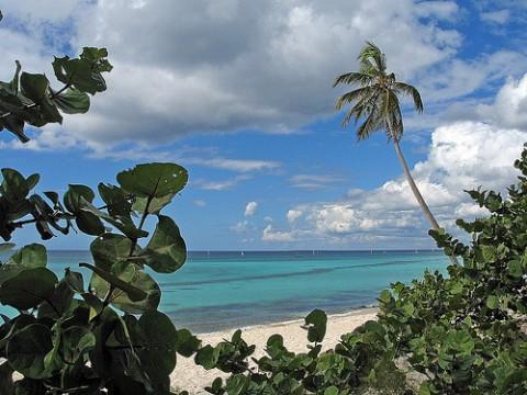 bayaibes-beach