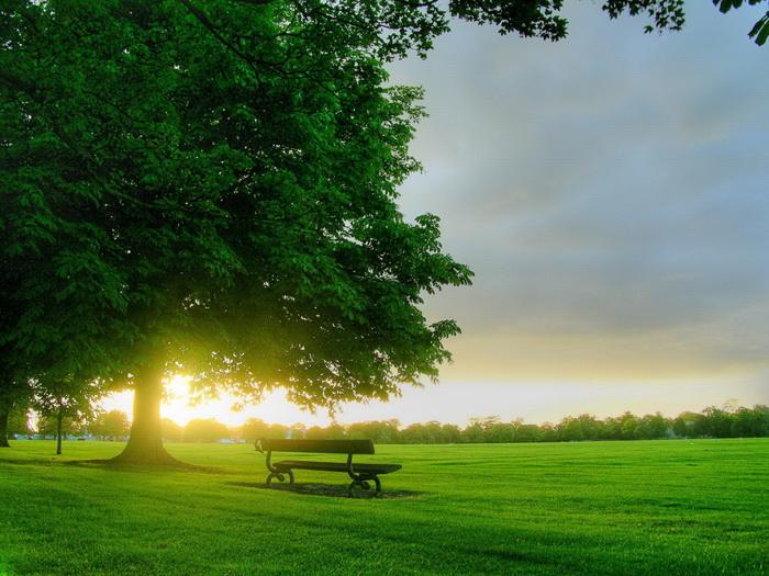 beautiful_landscape17