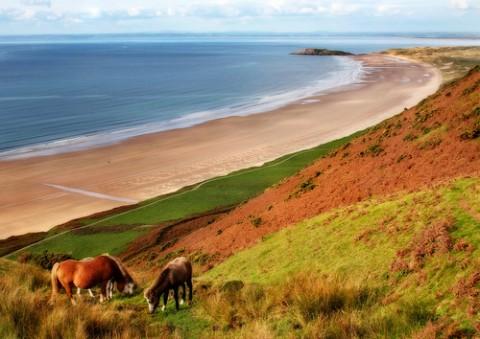 horses-at-rhossili-beach-gower