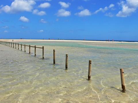 jandia-beach-at-dunas-jandia-resort-fuerteventura