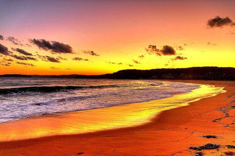 putty-beach-central-coast-nsw-australia