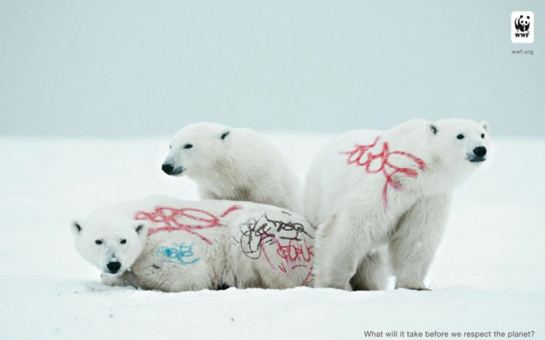 Photo of WWF Campaign