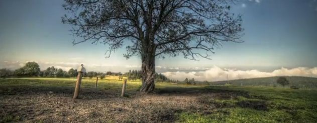 Photo of Autumn, court métrage en time lapse et HDR