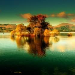 paysage (3)