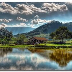 paysage (5)