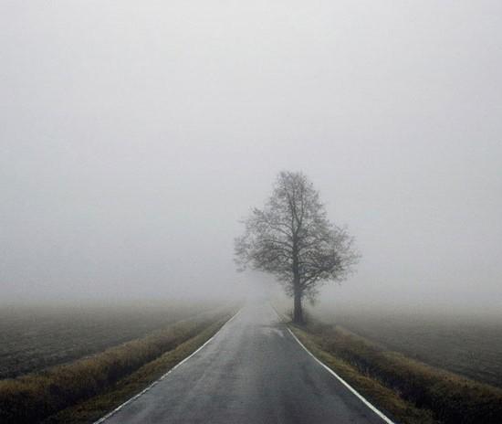paysage (24)