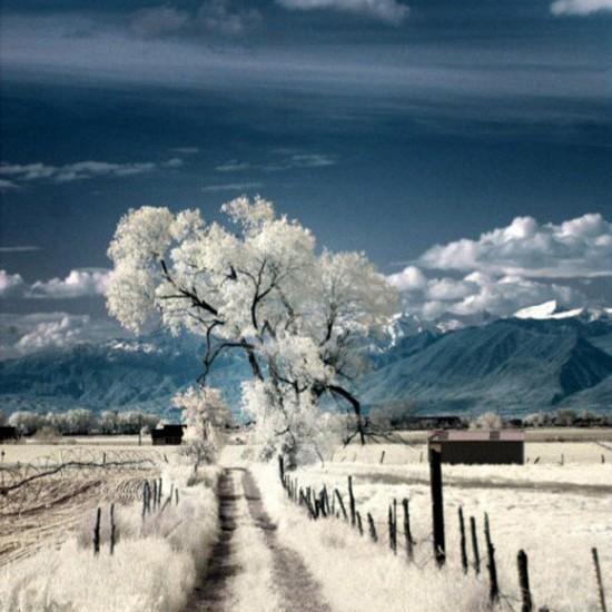 paysage (27)
