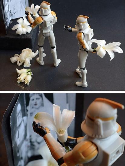 Stormtrooper34
