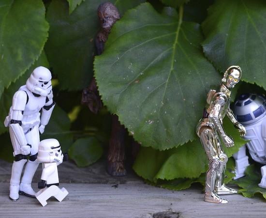 Stormtrooper77