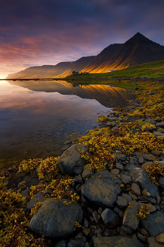 Evening in the Fjords