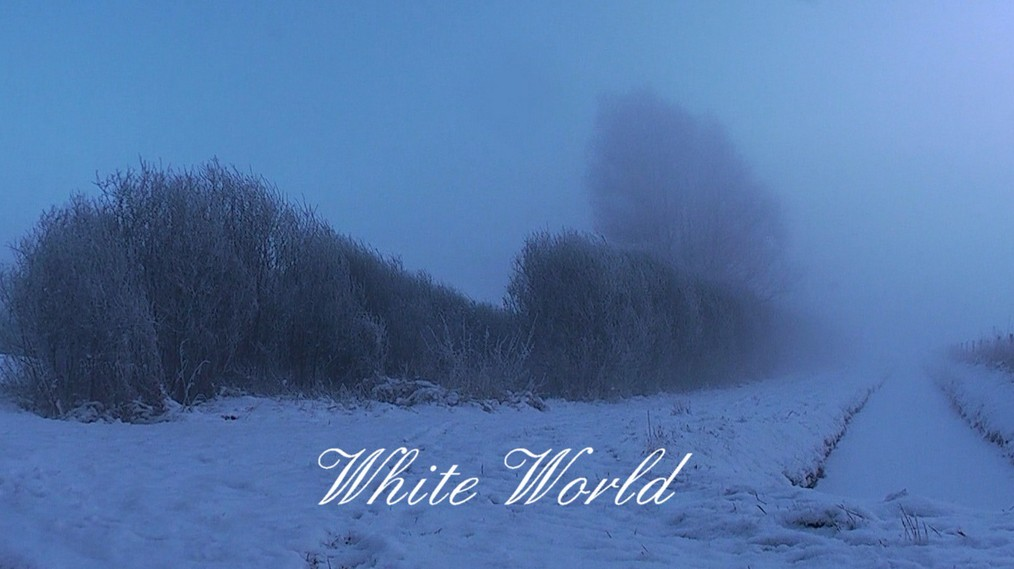 white_world