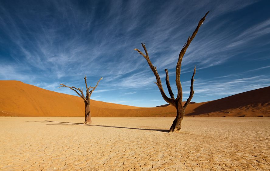 Lifeless in Deadvlei