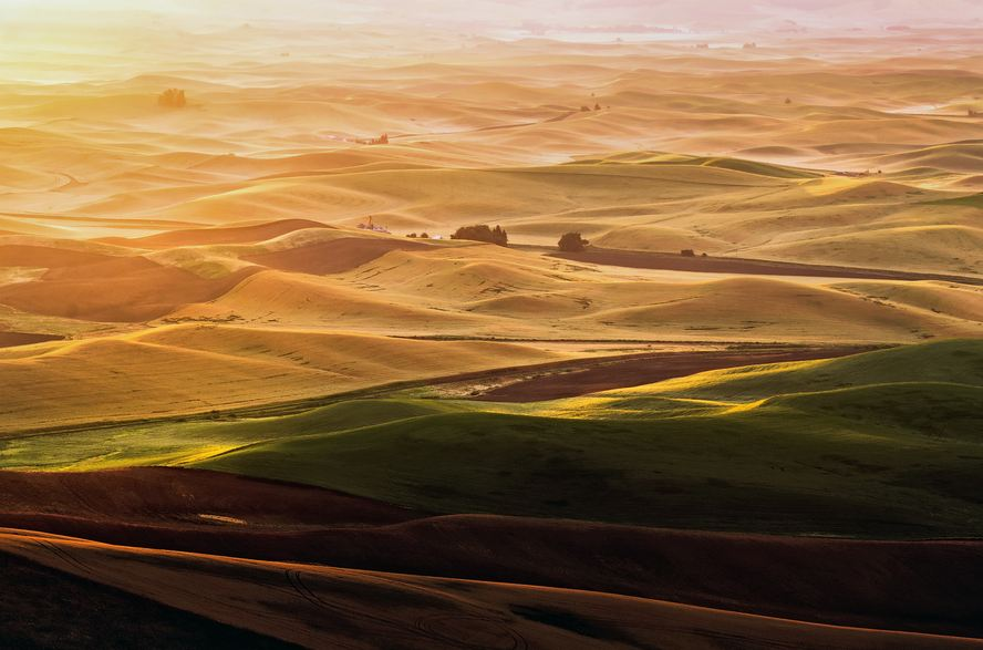 Sunrise at Palouse Hills