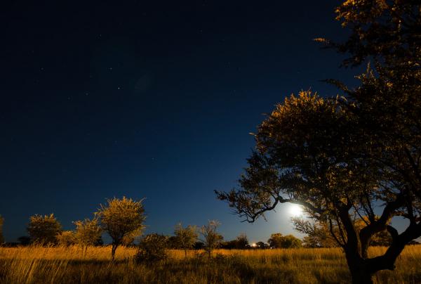 Time lapse de l'Afrique