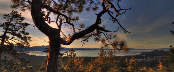 Time lapse de la beauté de notre nature - Monolation