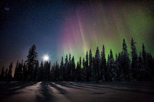 Photographie du jour #285 : Aurora Moon