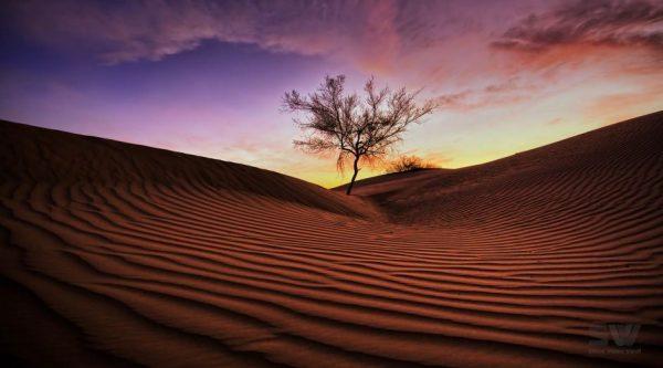 Time lapse de merveilleux paysages aux 4 coins de la terre