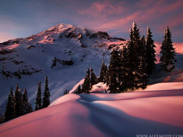 Photographie du jour #292 : Frozen Paradise