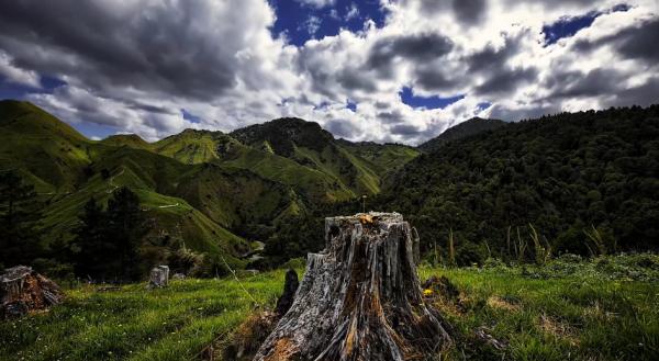 time-lapse-nouvelle-zelande
