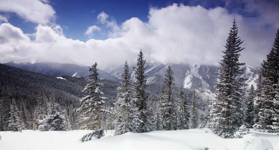 Photo of Time lapse sur la beauté de la nature d'Aspen – Colorado