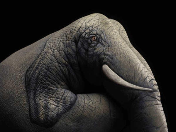 hand-painting-art-artiste-guido-daniele (53)