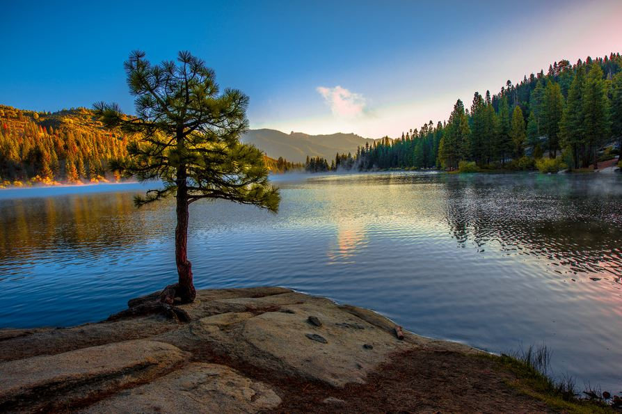 Photo of Photographie du jour #372 : Hume Lake
