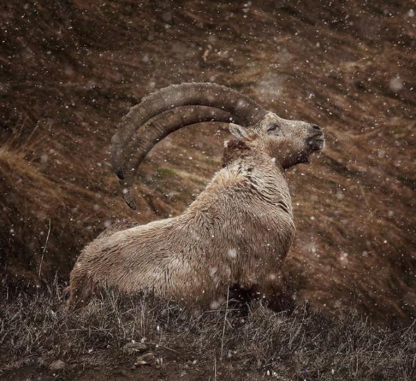 photographies-paysages-dalexandre-deschaumes (32)