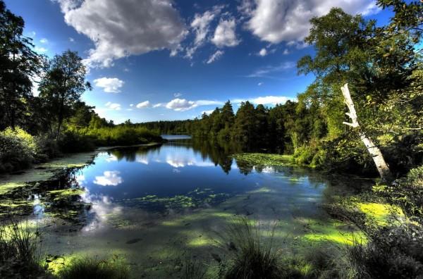 photographie-summer-silkeborg