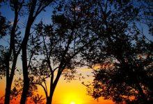 Photo of Photographie du jour #440 : Sunset Lignano