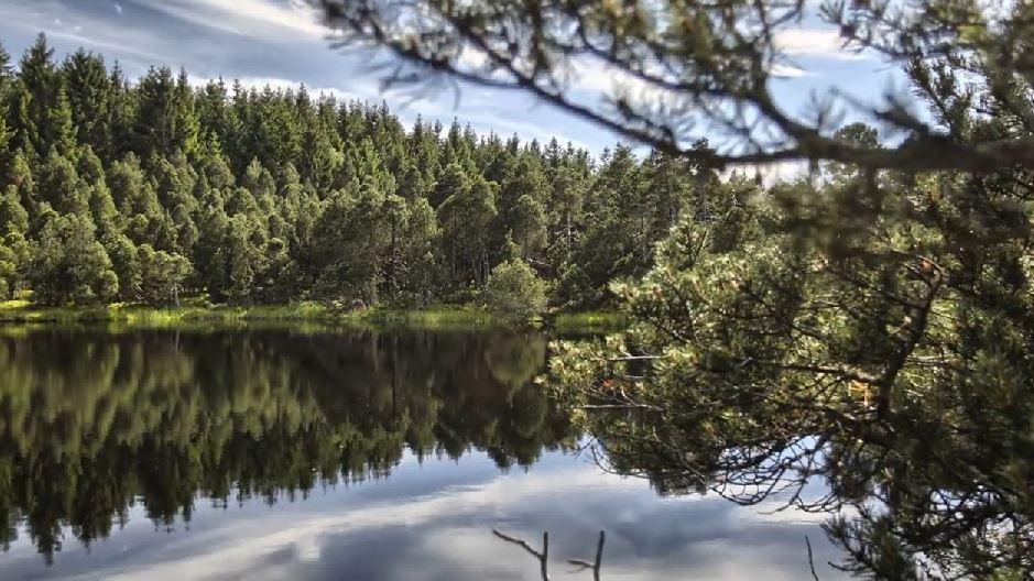 Fabuleux Time lapse du massif montagneux Forêt-Noire - Allemagne NQ12