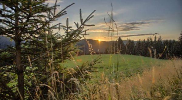 time-lapse-massif-montagneux-foret-noire-allemagne
