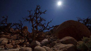 Photo of La beauté de l'Ouest américain – time lapse