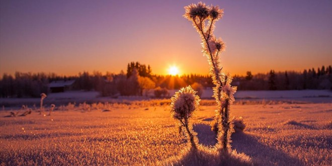 photographie-winter-evening