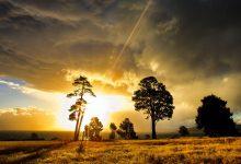 Photo of La beauté des paysages de la Nouvelle-Zélande en vidéo