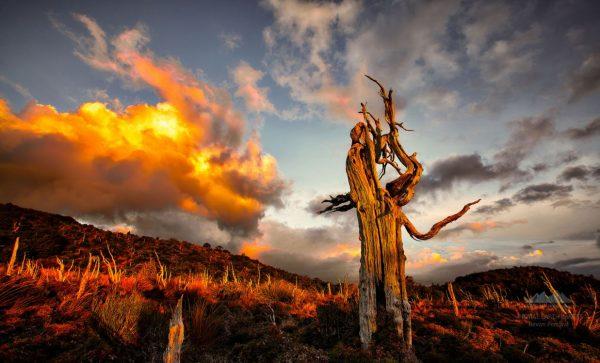 beaute-paysages-nouvelle-zelande-time-lapse
