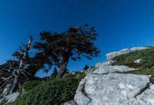 Photo of La beauté du parc national du Pollino en time lapse – Italie